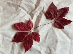 Minimalismus in allen Bereichen des Lebens | Die Bedeutung & Vorteile von Minimalismus