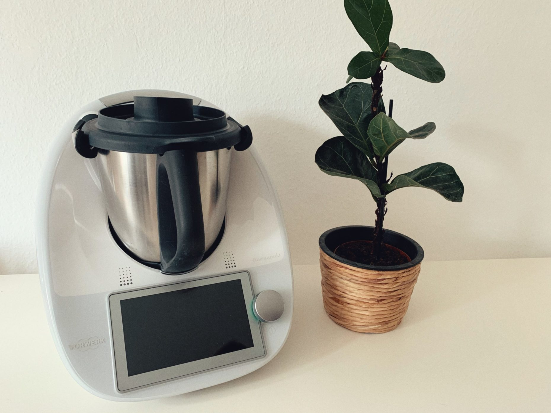 Die etwas andere Thermomix TM6 Review