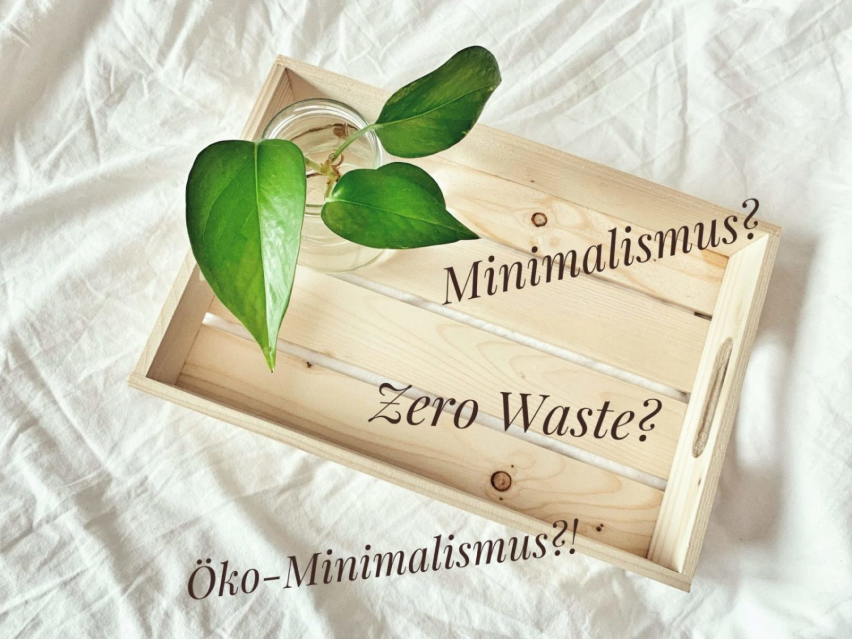 Minimalismus, Zero Waste oder Öko-Minimalismus?! | Unterschiede & Gemeinsamkeiten